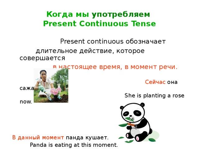 Когда мы употребляем   Present Continuous Tense  Present continuous обозначает   длительное действие, которое совершается  в настоящее время, в момент речи.   Сейчас она сажает розу.  She is planting a rose now.  В данный момент панда кушает.  Panda is eating at this moment.