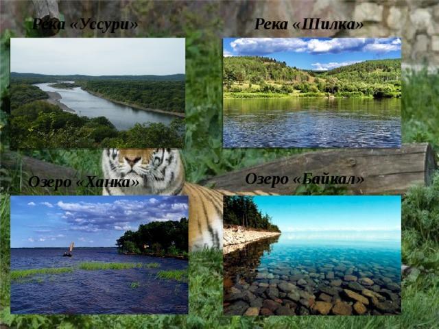 Река «Уссури»  Река «Шилка»  Озеро «Байкал» Озеро «Ханка»