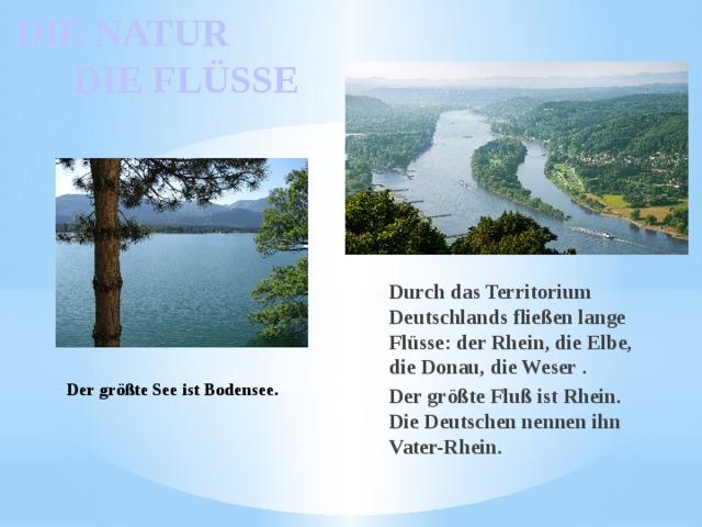 DIE NATUR  DIE FLÜSSE Durch das Territorium Deutschlands fließen lange Flüsse: der Rhein, die Elbe, die Donau, die Weser . Der größte Fluß ist Rhein. Die Deutschen nennen ihn Vater-Rhein.  Der größte See ist Bodensee.