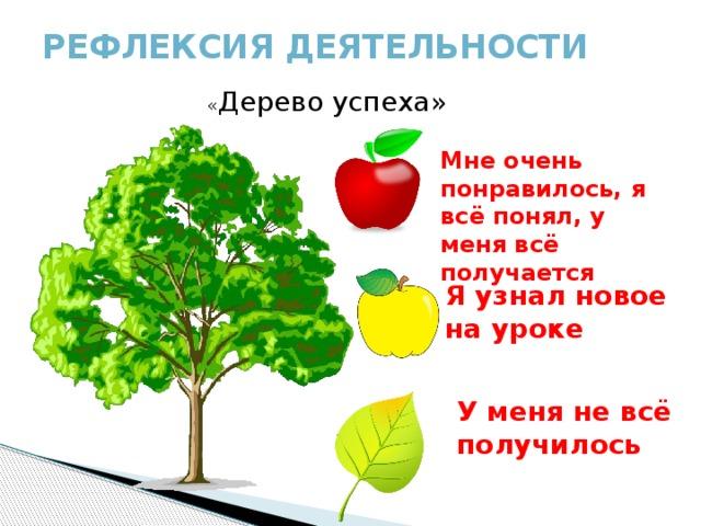 Рефлексия деятельности   « Дерево успеха» Мне очень понравилось, я всё понял, у меня всё получается Я узнал новое на уроке У меня не всё получилось