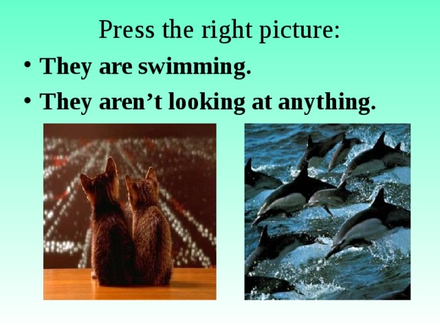 Press the right picture: