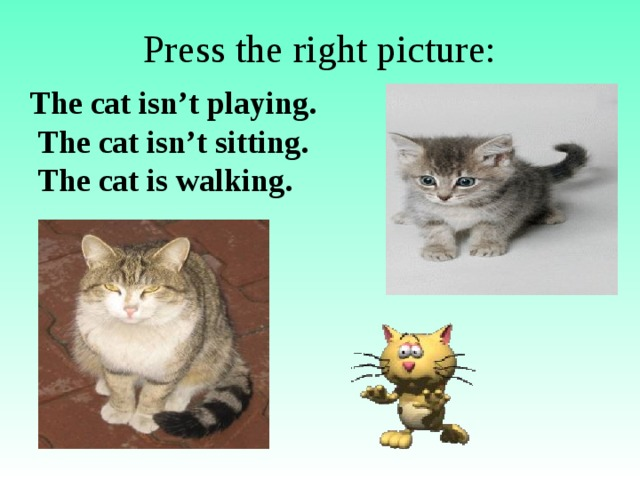 Press the right picture: The cat isn't playing.  The cat isn't sitting.  The cat is walking.