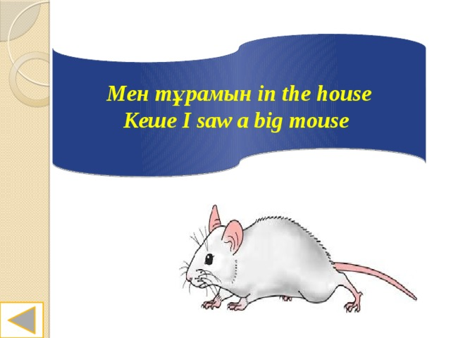 Мен тұрамын in the house Кеше I saw a big mouse