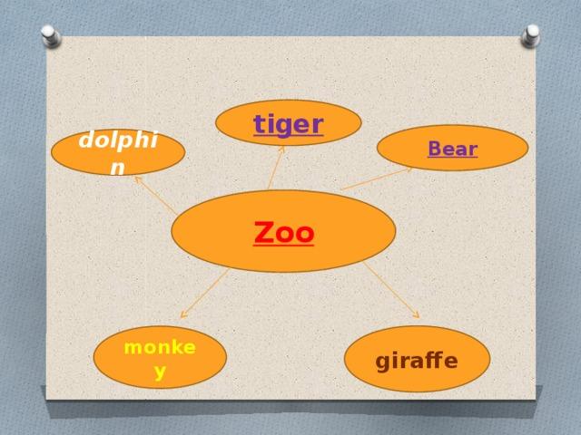 tiger Bear dolphin Zoo giraffe monkey