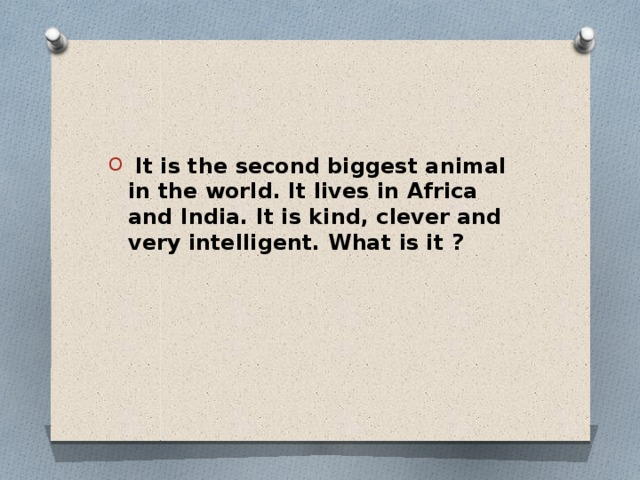 It is the second biggest animal in the world. It lives in Africa and India. It is kind, clever and very intelligent. What is it ?