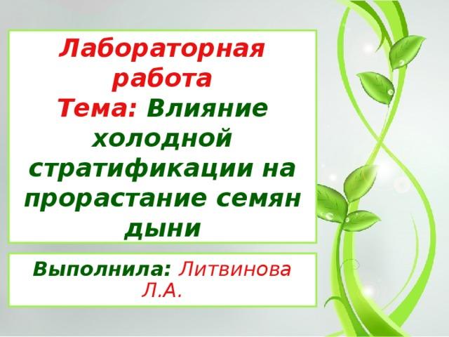 Лабораторная работа  Тема: Влияние холодной стратификации на прорастание семян дыни Выполнила: Литвинова Л.А.