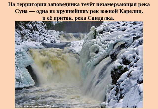 Натерритории заповедника течёт незамерзающая река Суна— одна изкрупнейших рек южной Карелии, иеёприток, река Сандалка.
