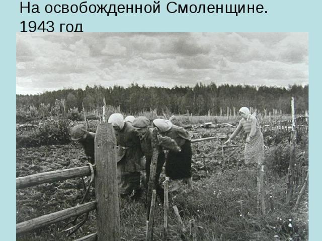 На освобожденной Смоленщине. 1943 год