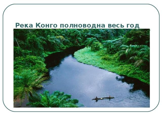 Река Конго полноводна весь год