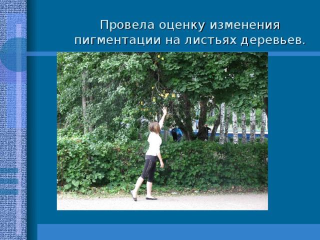 Провела оценку изменения пигментации на листьях деревьев.