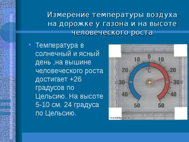 Измерение температуры воздуха на дорожке у газона и на высоте человеческого роста