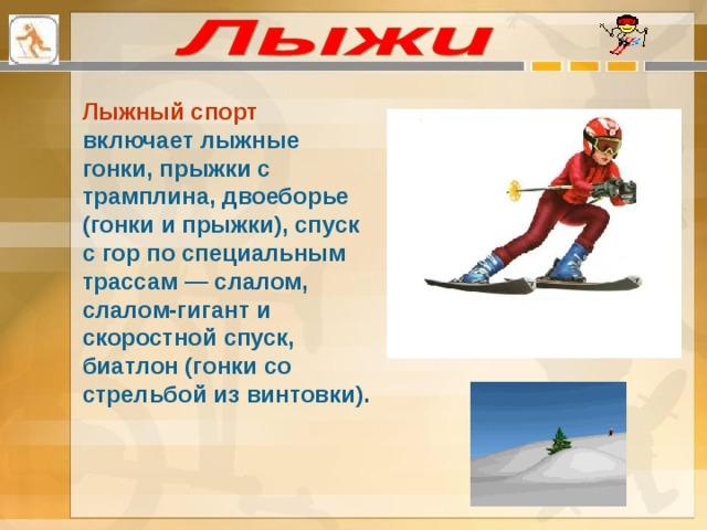 Лыжный спорт включает лыжные гонки, прыжки с трамплина, двоеборье (гонки и прыжки), спуск с гор по специальным трассам — слалом, слалом-гигант и скоростной спуск, биатлон (гонки со стрельбой из винтовки).