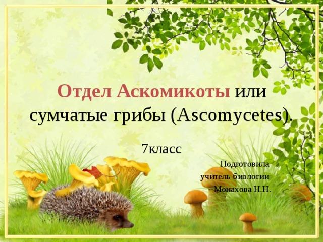Отдел  Аскомикоты  или сумчатые грибы (Ascomycetes). 7класс Подготовила учитель биологии Монахова Н.Н.