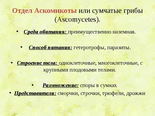 Отдел  Аскомикоты  или сумчатые грибы (Ascomycetes).