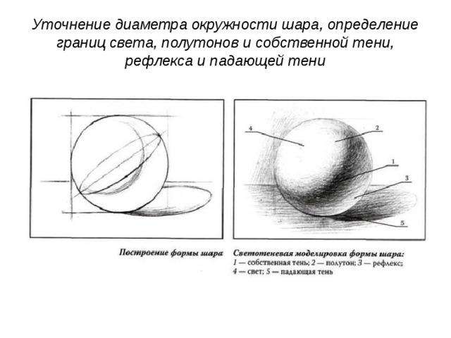 Уточнение диаметра окружности шара, определение границ света, полутонов и собственной тени, рефлекса и падающей тени