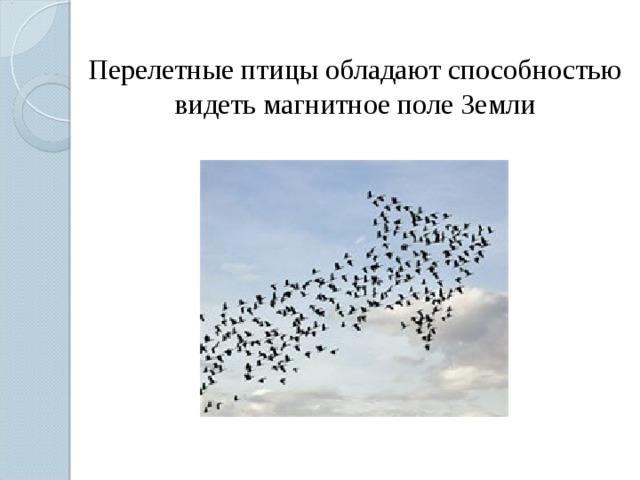 Перелетные птицы обладают способностью видеть магнитное поле Земли