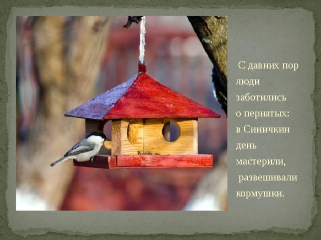«Подкорми птиц зимою— послужат тебе весною».    Сдавних пор люди заботились опернатых: вСиничкин день мастерили, развешивали кормушки. Сдавних пор люди заботились опернатых: вСиничкин день мастерили иразвешивали кормушки.