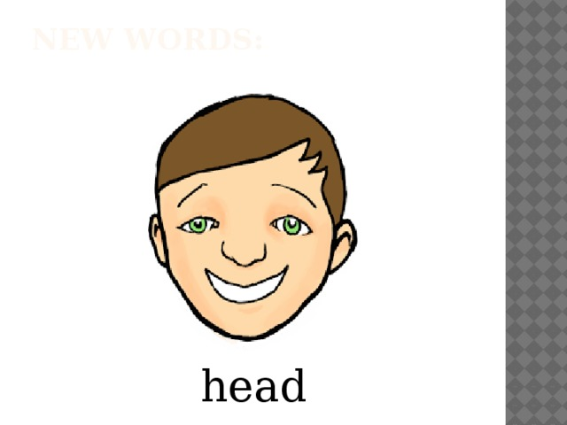 New words:   head