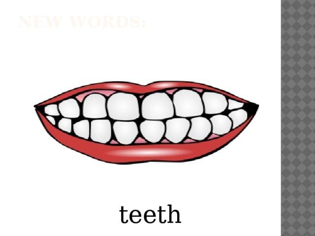 New words:   teeth