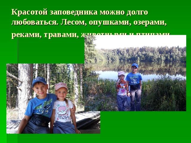 Красотой заповедника можно долго любоваться . Лесом, опушками, озерами, реками, травами, животными и птицами…