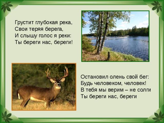 Грустит глубокая река, Свои теряя берега, И слышу голос я реки: Ты береги нас, береги! Остановил олень свой бег: Будь человеком, человек! В тебя мы верим – не солги Ты береги нас, береги