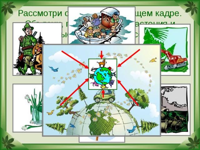 Рассмотри схему на следующем кадре. Объясни, почему многие растения и животные встречаются всё реже.