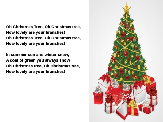 Oh Christmas Tree, Oh Christmas tree, How lovely are your branches! Oh Christmas Tree, Oh Christmas tree, How lovely are your branches!  In summer sun and winter snow, A coat of green you always show Oh Christmas tree, Oh Christmas tree, How lovely are your branches!