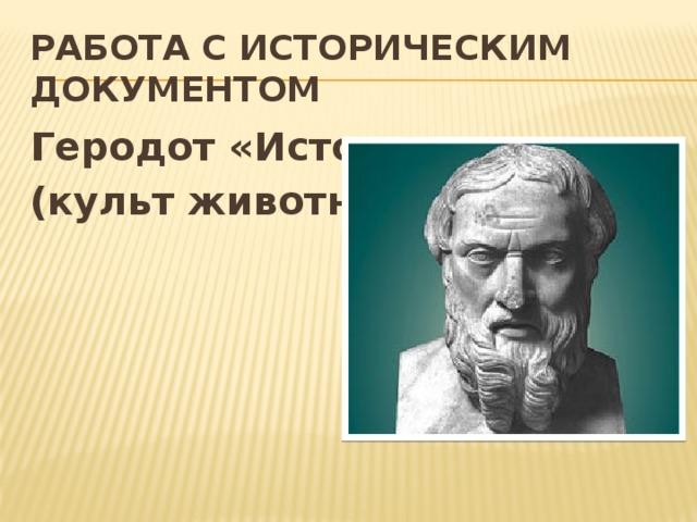 Работа с историческим документом Геродот «История» (культ животных)