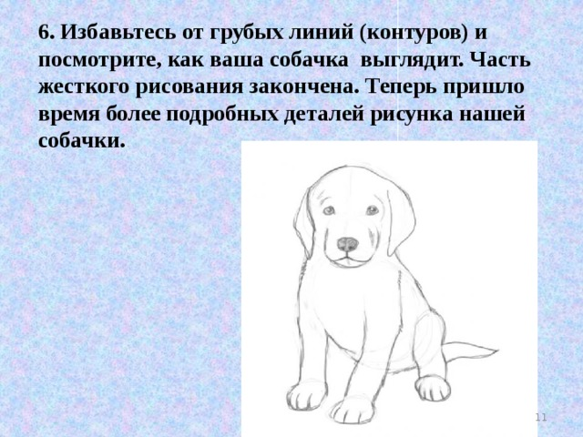 6. Избавьтесь от грубых линий (контуров) и посмотрите, как ваша собачка выглядит. Часть жесткого рисования закончена. Теперь пришло время более подробных деталей рисунка нашей собачки.