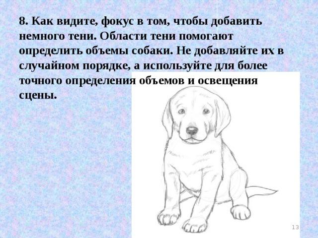 8. Как видите, фокус в том, чтобы добавить немного тени. Области тени помогают определить объемы собаки. Не добавляйте их в случайном порядке, а используйте для более точного определения объемов и освещения сцены.