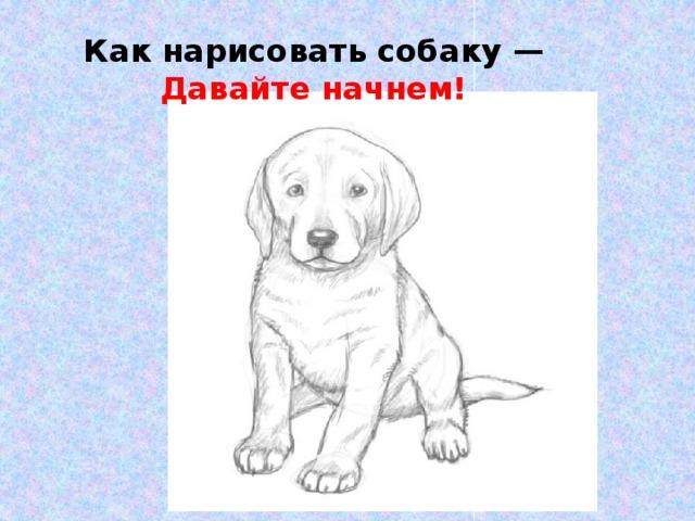 Как нарисовать собаку — Давайте начнем!