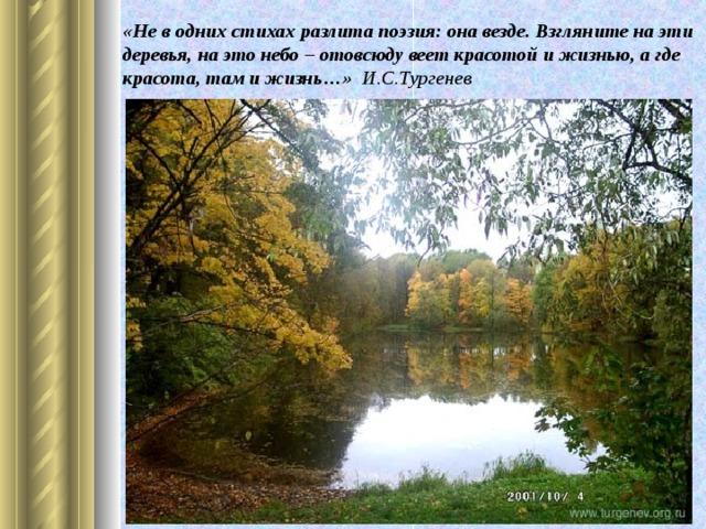 «Не в одних стихах разлита поэзия: она везде. Взгляните на эти деревья, на это небо – отовсюду веет красотой и жизнью, а где красота, там и жизнь…» И.С.Тургенев