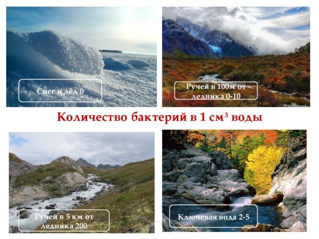 Снег и лёд 0 Ручей в 100м от ледника 0-10 Количество бактерий в 1 см 3 воды Ключевая вода 2-5 Ручей в 5 км от ледника 200