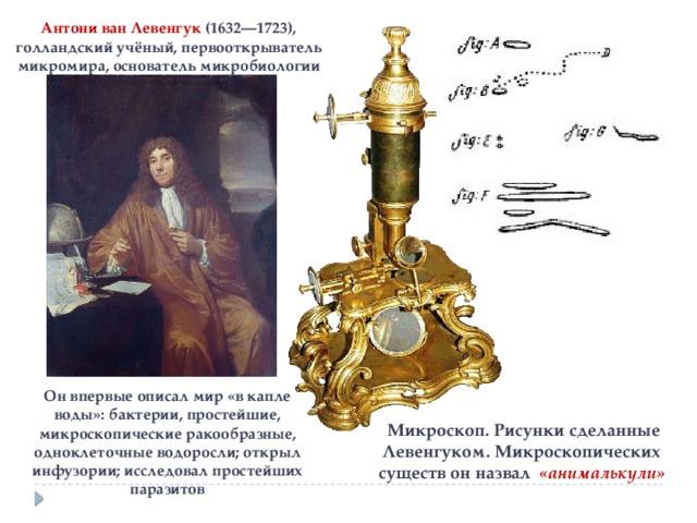 Антони ван Левенгук (1632—1723), голландский учёный, первооткрыватель микромира, основатель микробиологии Он впервые описал мир «в капле воды»: бактерии, простейшие, микроскопические ракообразные, одноклеточные водоросли; открыл инфузории; исследовал простейших паразитов  Микроскоп. Рисунки сделанные Левенгуком. Микроскопических существ он назвал «анималькули»