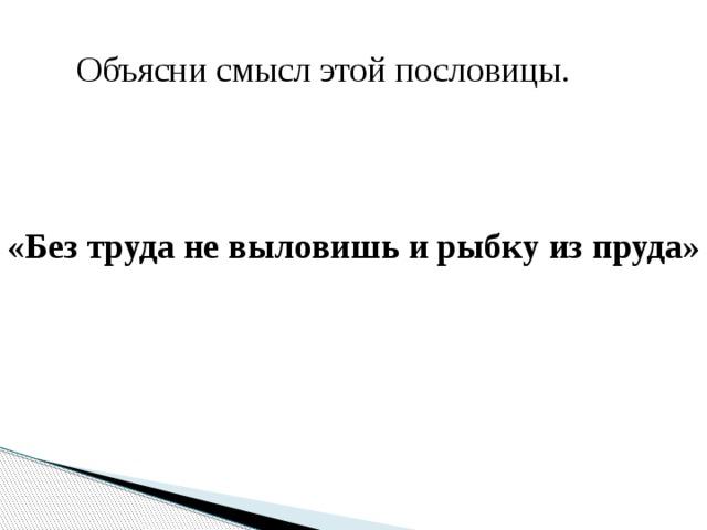Объясни смысл этой пословицы. «Без труда не выловишь и рыбку из пруда»