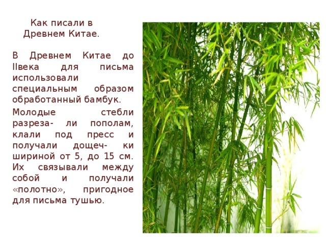 Как писали в Древнем Китае. В Древнем Китае до IIвека для письма использовали специальным образом обработанный бамбук. Молодые стебли разреза- ли пополам, клали под пресс и получали дощеч- ки шириной от 5, до 15 см. Их связывали между собой и получали «полотно», пригодное для письма тушью.