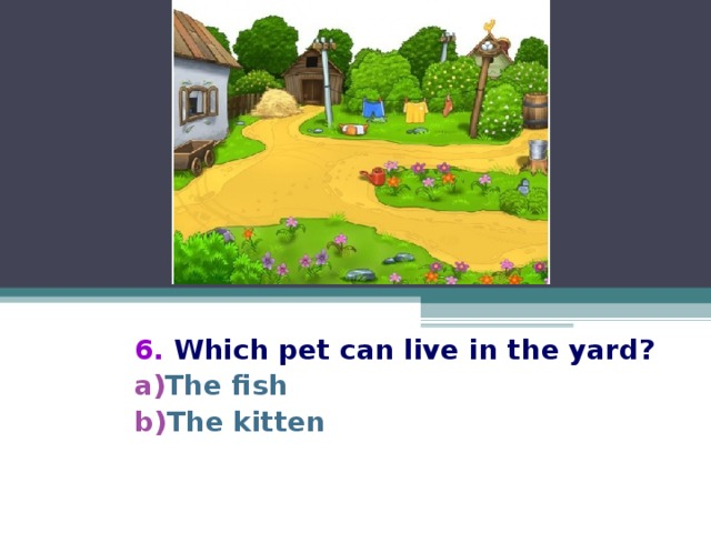6. Which pet can live in the yard? The fish The kitten