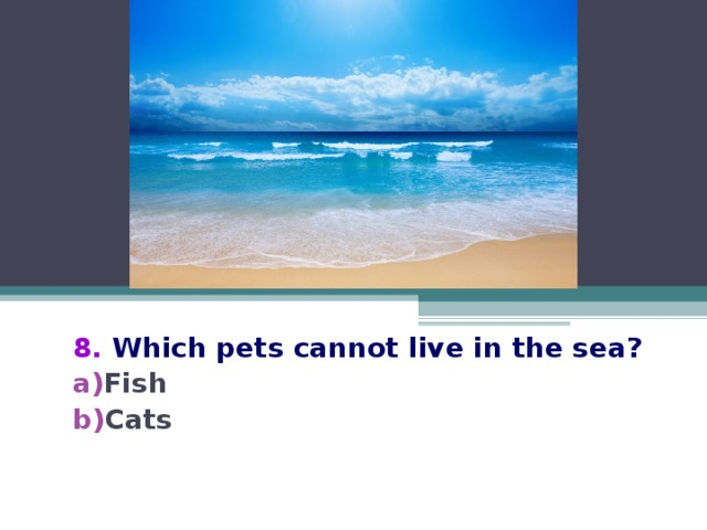 8.  Which pets cannot live in the sea?
