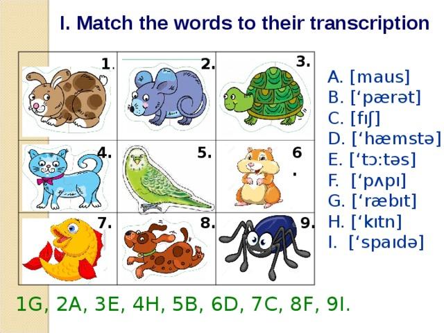 I. Match the words to their transcription 3. 1 . 2. A. [maus] B. ['pærət] C. [fıʃ] D. ['hæmstə] E. ['tɔ:təs] F. ['p ᴧ pı] G. ['ræbıt] H. ['kıtn] I. ['spaıdə] 6. 5. 4. 8. 9. 7. 1G, 2A, 3E, 4H, 5B, 6D, 7C, 8F, 9I.