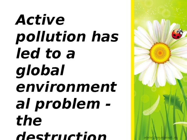 Active pollution has led to a global environmental problem - the destruction of the environment of human existence.