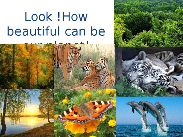 Look !How beautiful can be our planet!