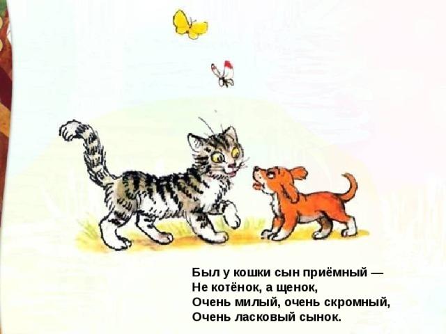 Был у кошки сын приёмный —  Не котёнок, а щенок,  Очень милый, очень скромный,  Очень ласковый сынок.
