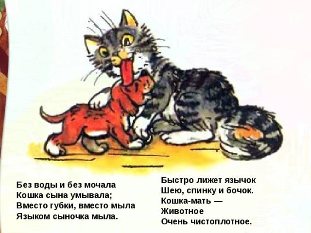Быстро лижет язычок  Шею, спинку и бочок.  Кошка-мать —  Животное  Очень чистоплотное. Без воды и без мочала  Кошка сына умывала;  Вместо губки, вместо мыла  Языком сыночка мыла.