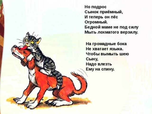 Но подрос  Сынок приёмный,  И теперь он пёс  Огромный.  Бедной маме не под силу  Мыть лохматого верзилу. На громадные бока  Не хватает языка.  Чтобы вымыть шею  Сыну,  Надо влезть  Ему на спину.
