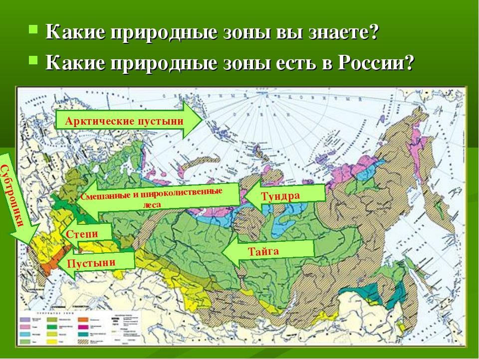 рукодельницы природный зоны россии если арсенале