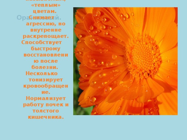 Оранжевый.   Относится к, так называемым, «теплым» цветам. Снимает агрессию, но внутренне раскрепощает. Способствует быстрому восстановлению после болезни. Несколько тонизирует кровообращение. Нормализует работу почек и толстого кишечника.