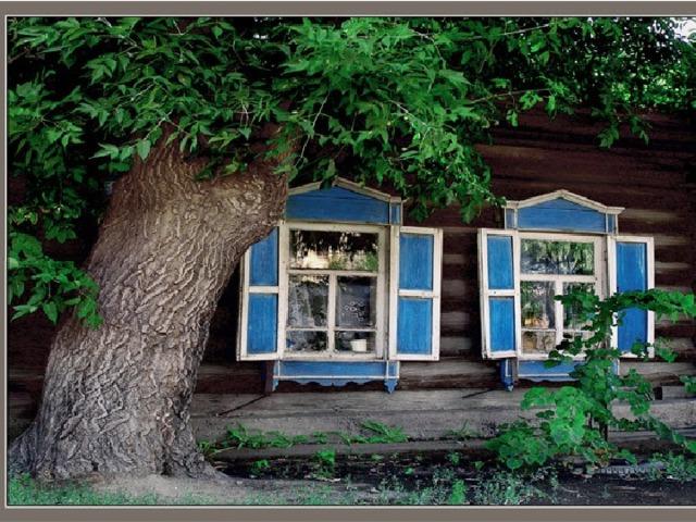 «Низкий дом с голубыми ставнями»