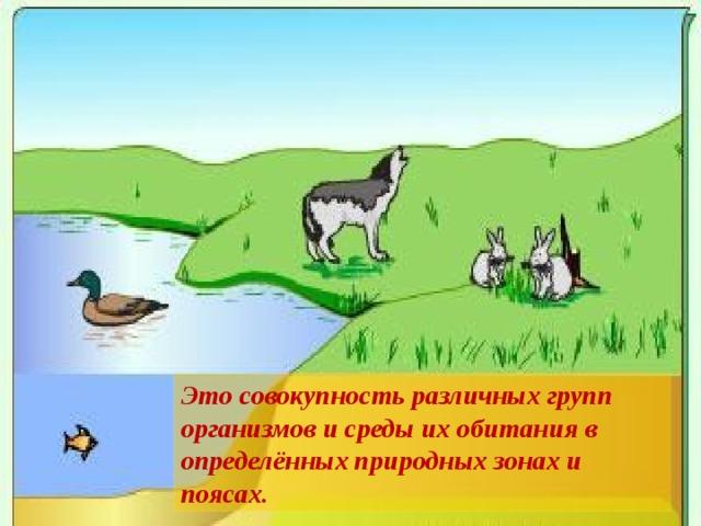 Это совокупность различных групп организмов и среды их обитания  в определённых природных зонах и поясах.