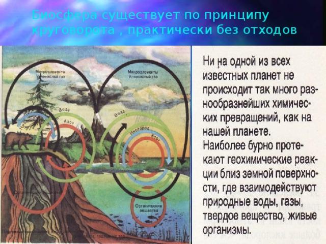 Биосфера существует по принципу круговорота , практически без отходов
