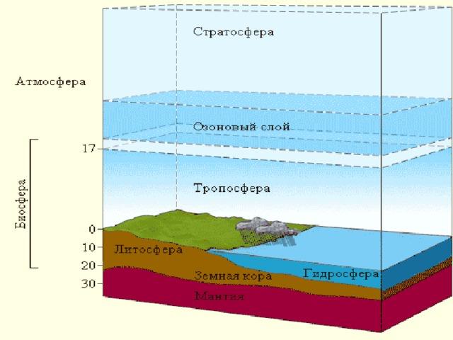 Сколько этажей у биосферы?